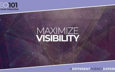 SEO101: Maximize Visibility within Search Engine Results