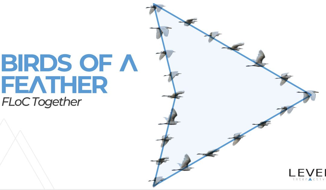 Google FLoC – Birds of a Feather FLoC Together in a Privacy-Centric Digital Space